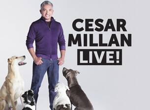 Cesar Millan Is in Grand Rapids, tomorrow night at DeVos Performance Hall! We have our tickets!!! Anyone else going? htt...