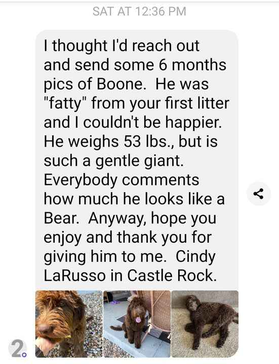 Messages like these just melt my heart and make my whole day! I have been getting so many sweet messages and updates lat...