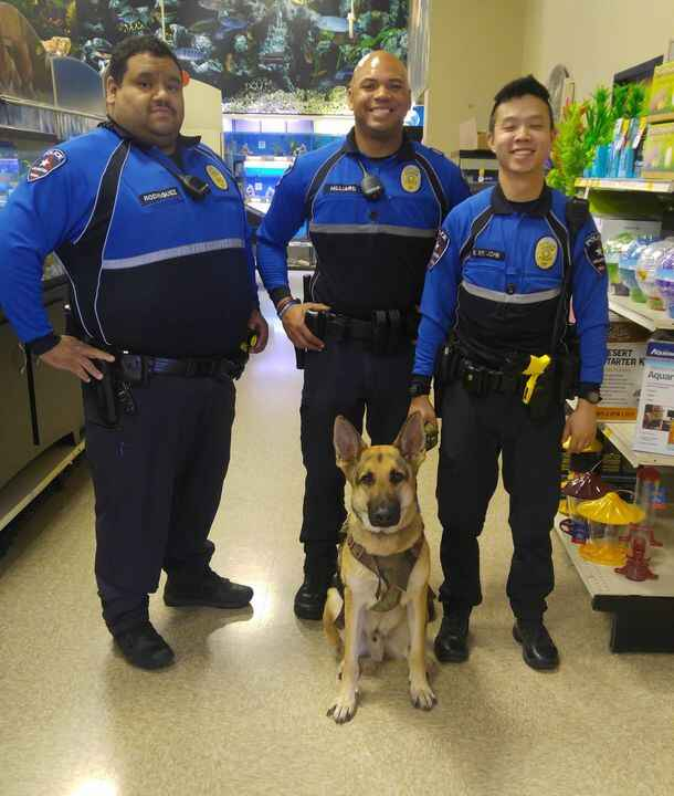 Ho'akoa hanging out with some of Arlington's finest at work. #Arlingtonpolicedepartment