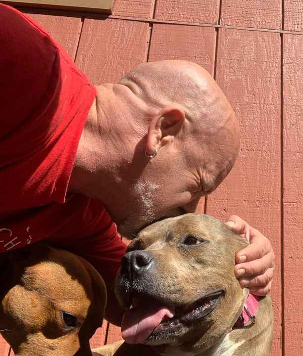 One of the FEW blessings of this pandemic is that with people being shut in, dog adoptions are up.Still though, dogs —ES...