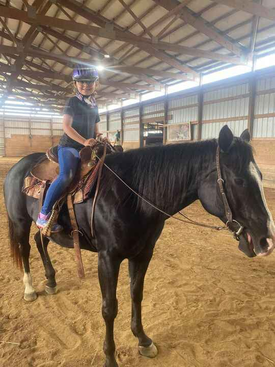 Welcome Ari to the horse addiction!!! Can't wait to see where your horse future takes you!!!!!